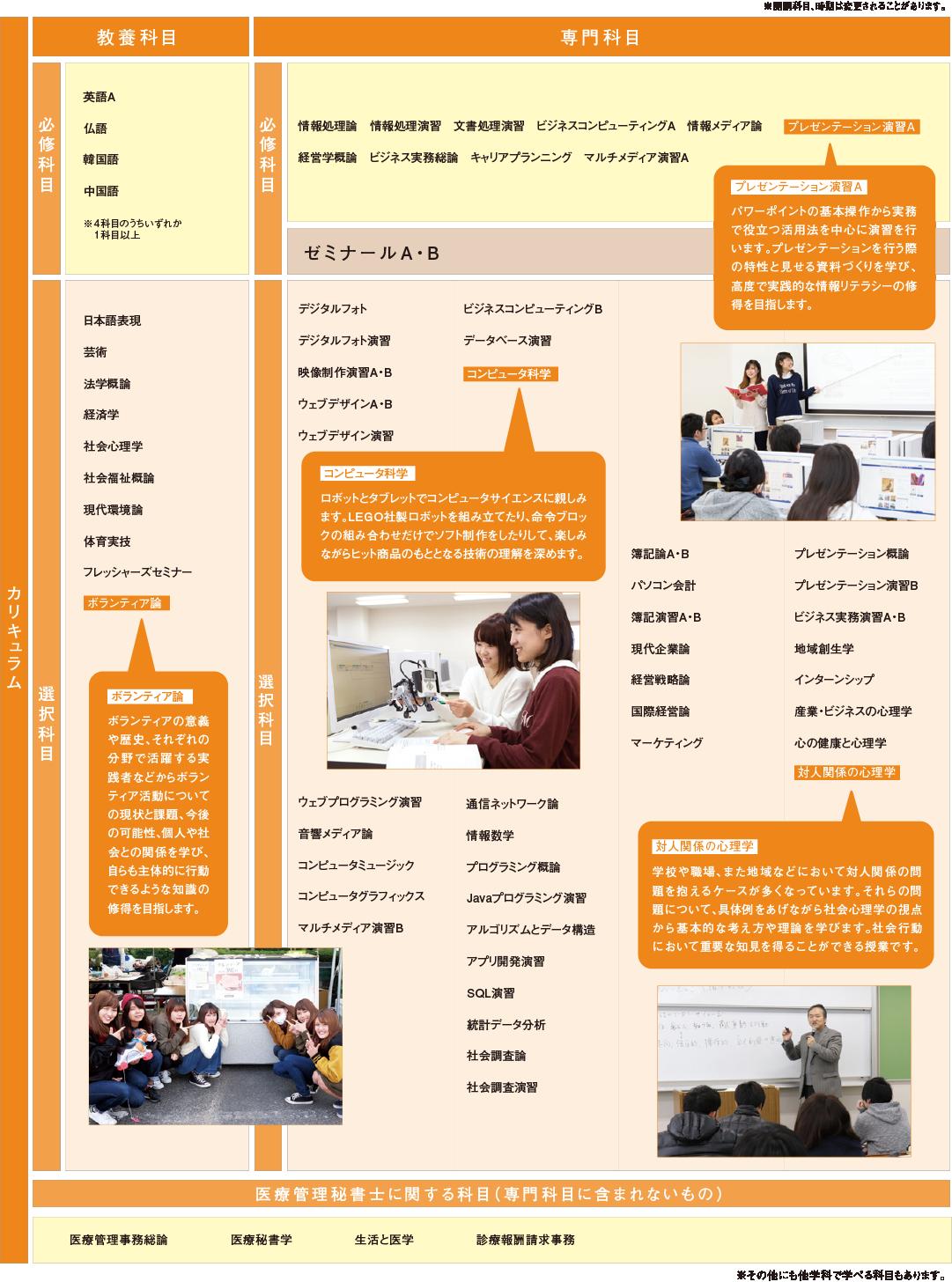 情報ビジネス学科のカリキュラム